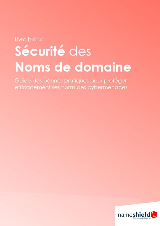 Livre blanc la sécurité des noms de domaine