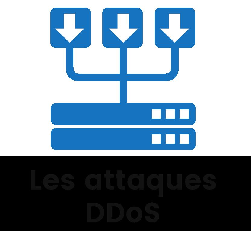 Les attaques DDoS